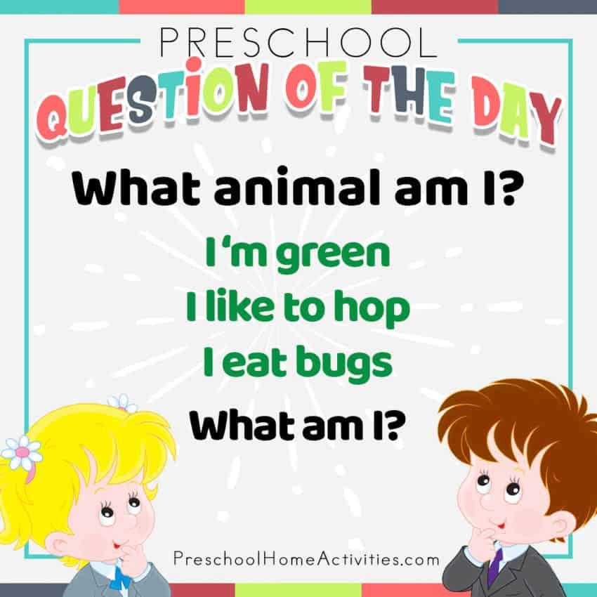 Animal Question of the Day