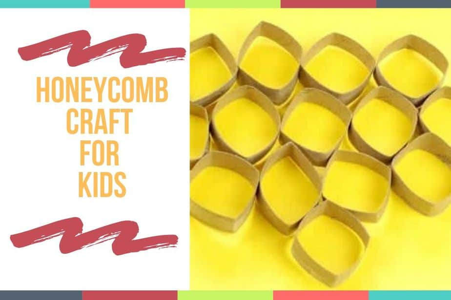 Honeycomb Craft for Kids