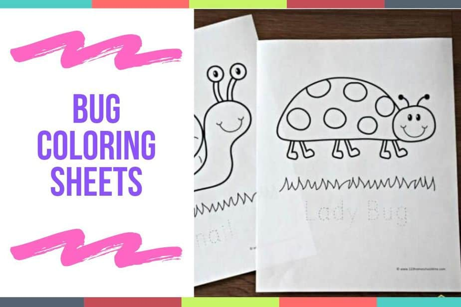 Bug Coloring Sheets