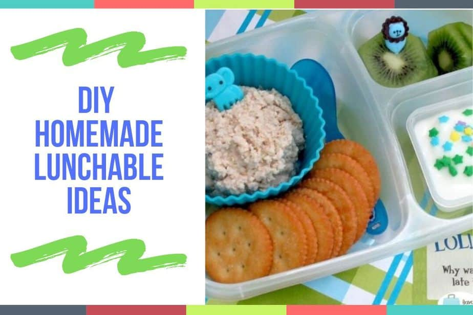 DIY Homemade Lunchable Ideas