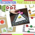 Shape Recognition Printables For Kids