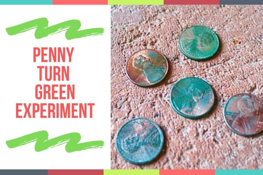 Penny Turn Green Experiment