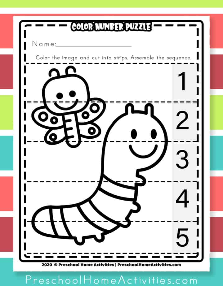 Bug Counting Puzzle Printable