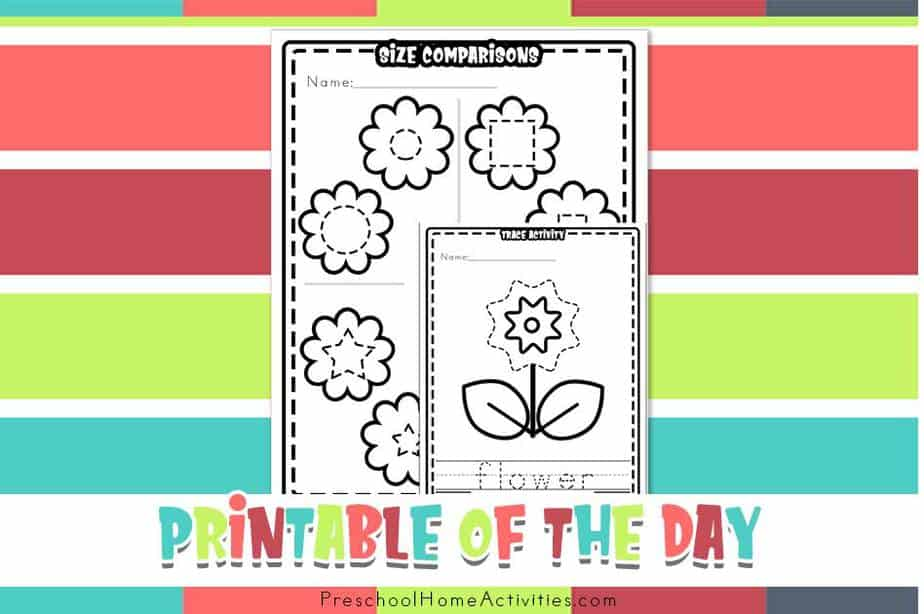 Preschool Flower Theme Worksheets