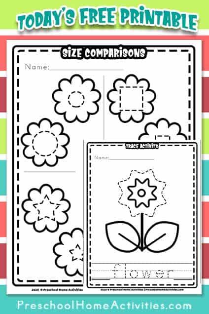 Preschool Flower Theme Worksheets Preschool Home Activities