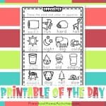 Preschool Opposite Worksheets