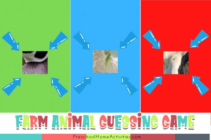 Farm Animals Preschool Toddler Guessing Games Feature