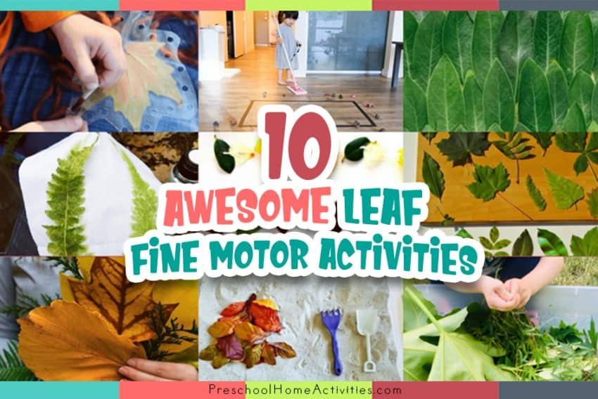 Leaves Fine Motor Activities