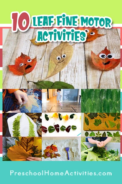 Leaves Fine Motor Activities Pinterest