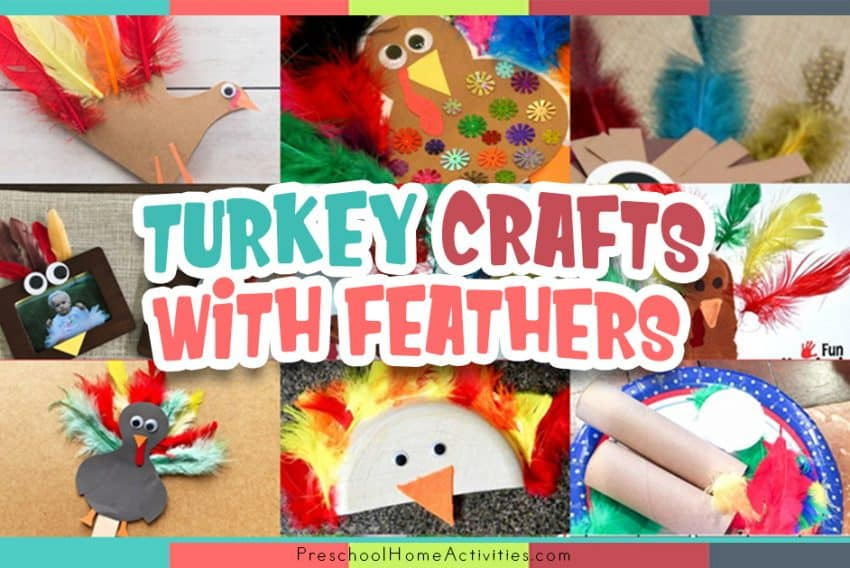 Preschool Turkey Crafts With Feathers Feature