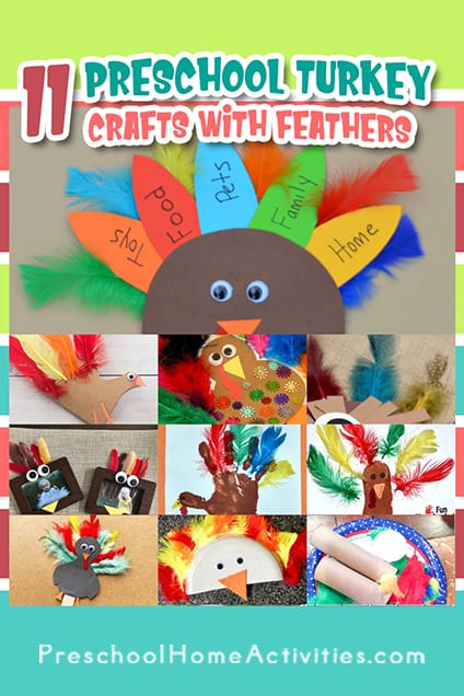 Preschool Turkey Crafts With Feathers Pin